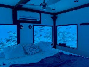 the-underwater-room